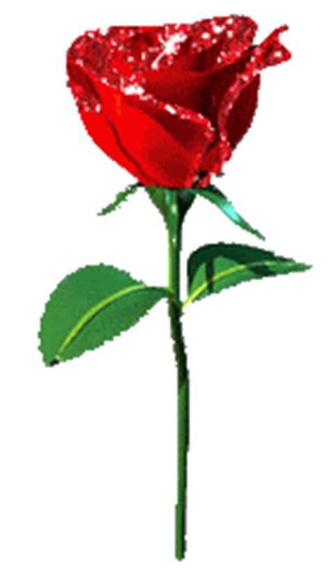 imagenes gif rosas rojas 50 im 225 genes de rosas en movimiento originales