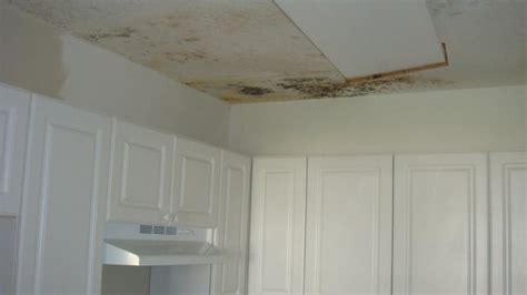 Removing Mold From Drywall Ceiling by Hiding Mold It S There You Just To Look For It