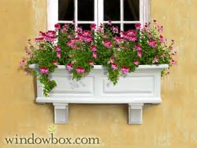 white window box self watering planter box windowbox