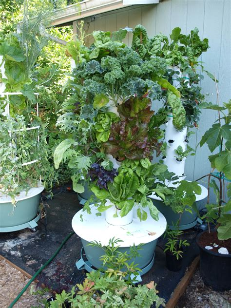 backyard gardens tower garden cleaning our tower gardens backyard tower garden