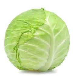 the meaning and symbolism of the word 171 cabbage 187