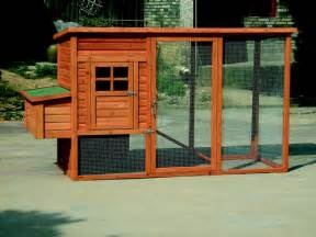 How To Build A Backyard Chicken Coop How To Introduce Chickens To Free Range Backyard Chickens