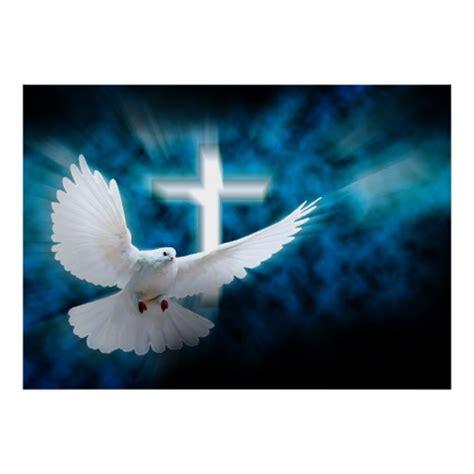 imagenes de palomas blancas grandes cruz blanca y paloma santa en el poster oscuro del zazzle