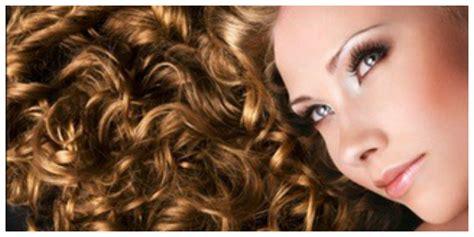 regis hair style price regis salon haircut prices hairstylegalleries com