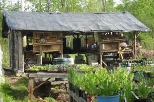 Green Kitchen Storage Jars - outbuildings snakeroot organic farm