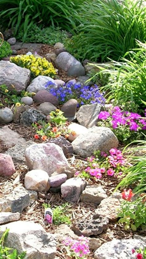 How To Start A Rock Garden How To Start A Rock Garden Starting A Rock Garden