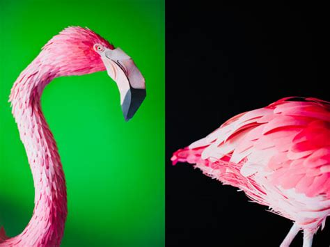 3d Origami Flamingo - lifelike bird sculptures made from paper by diana herrera