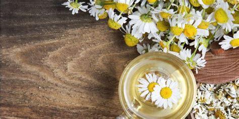 fiori di bach dove si comprano vendita fiori commestibili dove si comprano di