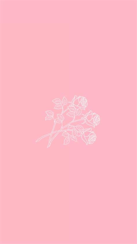 imagenes rosas fondo de pantalla f o n d o s wallpapers nuevo fondo de cactus