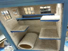 Tardis Cat House Plans Tardis Cat Cond Tardis Cat Condo Cat House Plans Mexzhouse