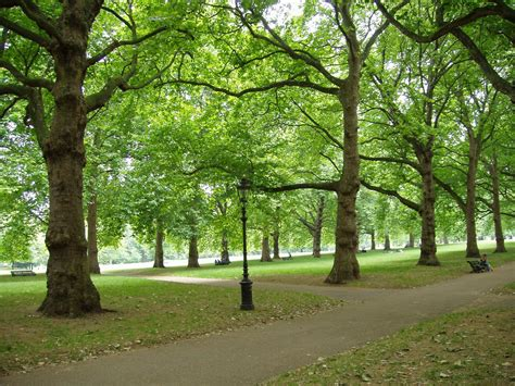 background green park london green park wallpapers high quality green park backgrounds