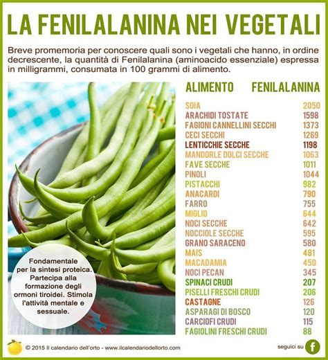 fenilalanina alimenti fenilalanina nei vegetali alimentazione