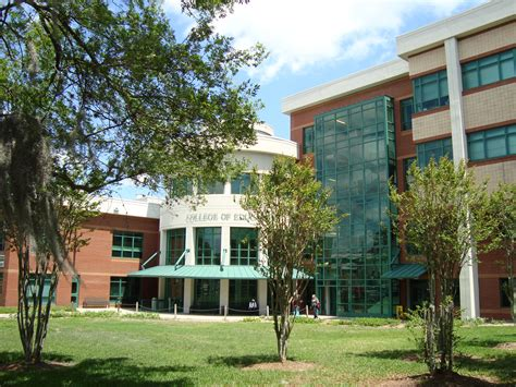 Of South Florida Mba Placements by Www South Student Login Wowkeyword
