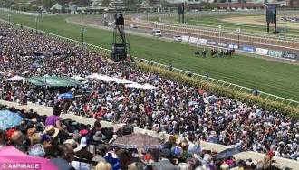 how the melbourne cup costs us more than 1bn every year