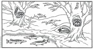 12 Best pictures about animals hibernating coloring pages at
