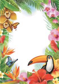 Butterfly Border Template by Flower And Butterfly Border Templates Cliparts Co