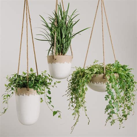 hanging planter freida hanging planter magnolia chip joanna gaines