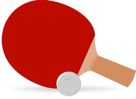 Raket Pingpong free vector graphic ping pong table tennis paddle free image on pixabay 311935