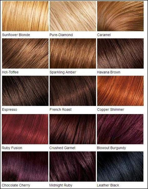 brown hair color chart brown hair color chart medium brown hair colour chart coloring the 25 best hair color charts ideas on garnier hair color brown garnier hair