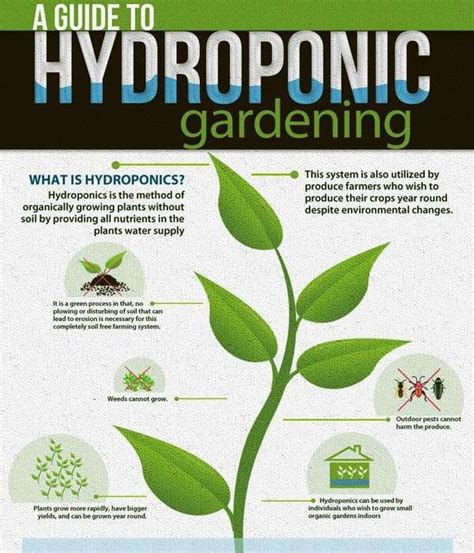 gardening guides hydroponic gardening guides hydroponic gardening guides