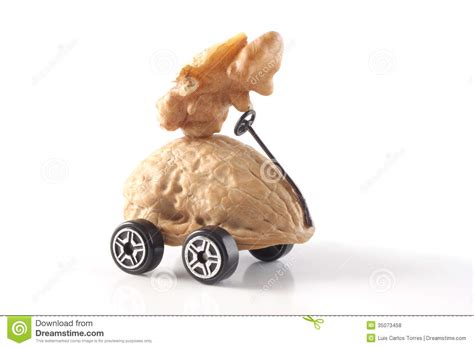 drive you nuts driving me nuts royalty free stock photos image 35073458