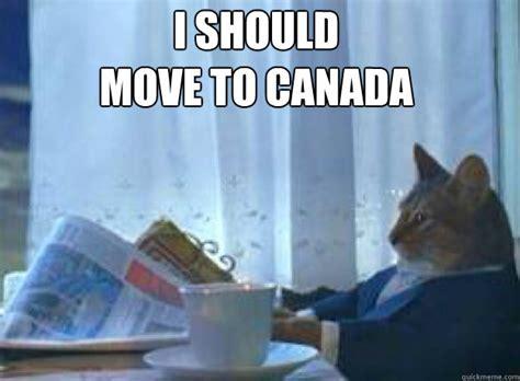 Cat Meme I Should Buy A Boat - i should move to canada i should buy a boat cat quickmeme