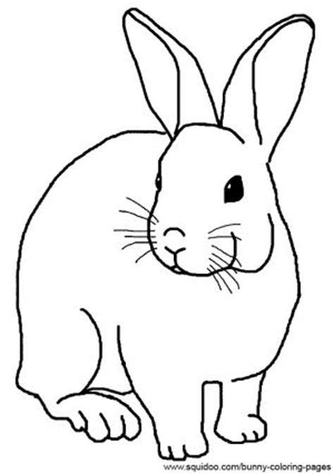 rabbit hutch coloring page realistic rabbit coloring pages animals pinterest