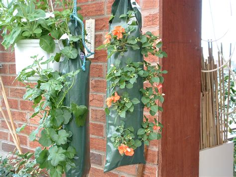 Hanging Planter Bag by Packaging Products