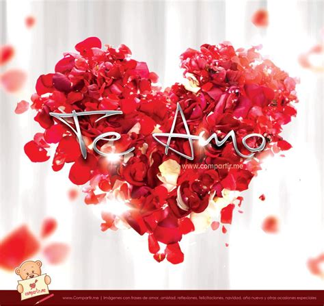 imagenes te amo ramon coraz 243 n de p 233 talos de rosas con frase te amo