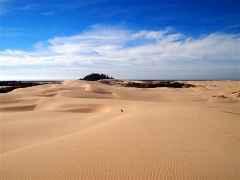 oregon sand dunes america pinterest