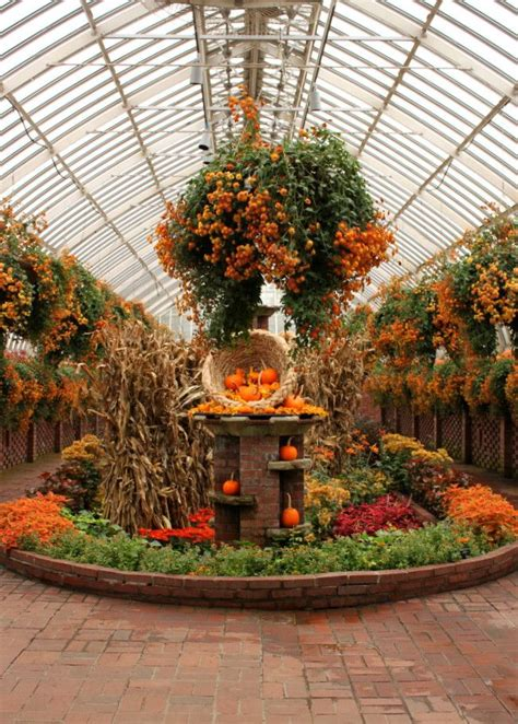 fall garden pictures 466 best images about nursery display ideas on