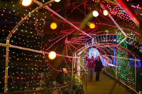 Botanical Garden Of Lights 2017 Top Lights Displays In