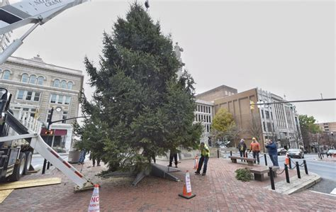 lancaster city seeking christmas tree donation local