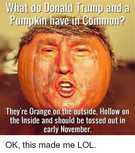 does donald a what do donald and a pumpkin in common they re orange on the outside