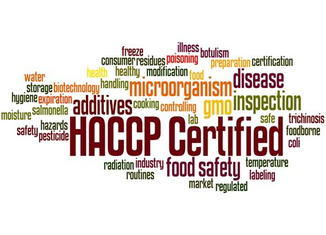 for food level 4 in haccp management for food manufacturing