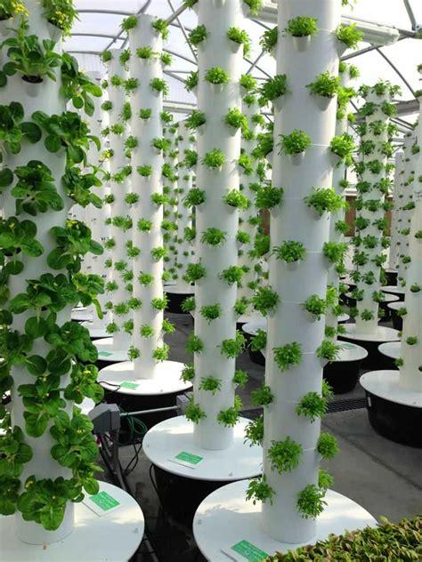 vertical aeroponic tower garden