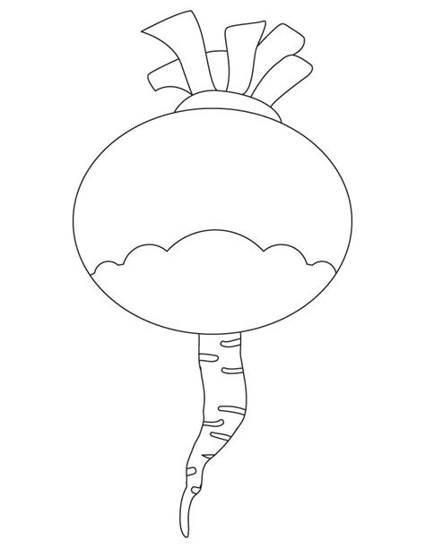 turnip vegetable coloring page download free turnip