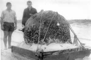 national archives of australia ww2 section german bomb washed up on gold coast beach is secured abc