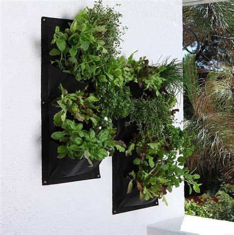 herb wall vertical herb garden nifty homestead