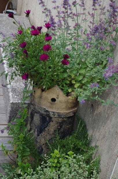 Chimney Planter by 23 Best Images About Chimney Pot Planting On