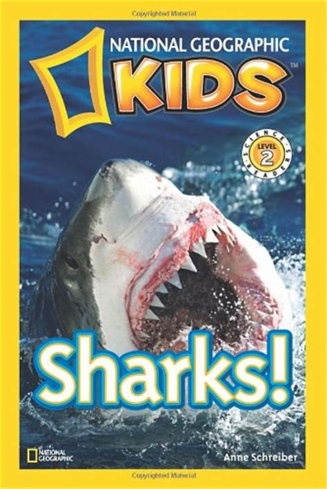 the best shark books for kids parenting chaos