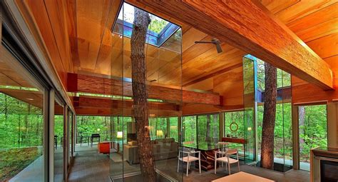 red coral on glass stand contemporary home decor by trees encased in glass continue to grow through house