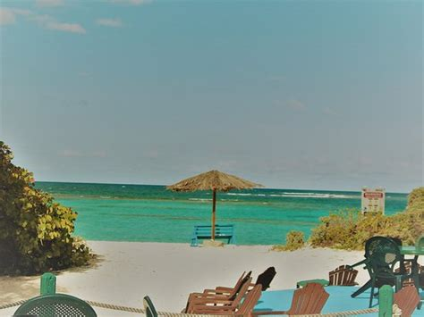 big bamboo cottages anegada british virgin islands