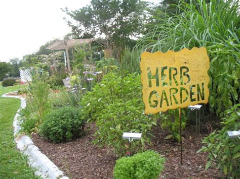 planting a culinary herb garden landscaping gardening how to use herbs in the landscape hgtv