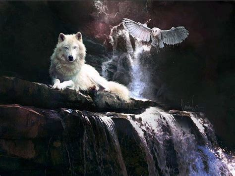 Owl Wolf by Wolf And Owl Wolf