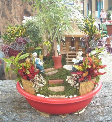 Dish Garden Ideas 17 Best Images About Dish Gardens On Gardens Cactus And Plants