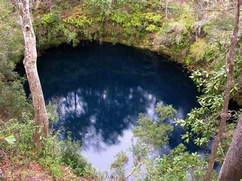 Tallahassee Sink Holes by 17 Best Images About Sinks Geological Site On