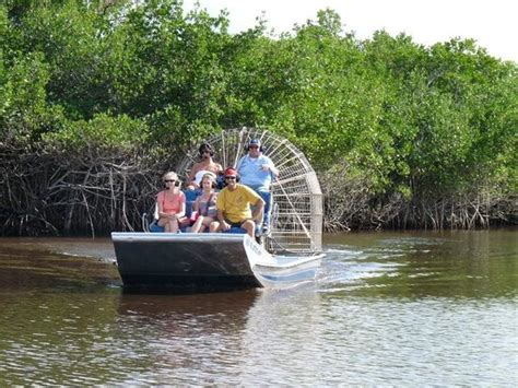 best everglades airboat tours reviews air boat picture of everglades city airboat tours