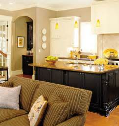 kitchen living room combos