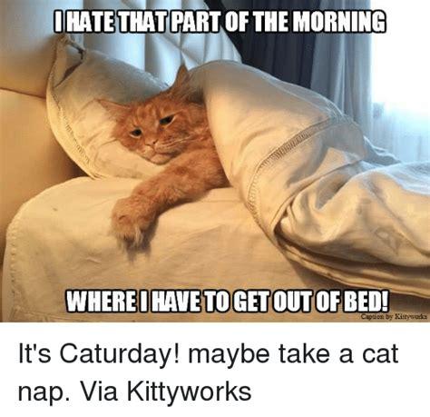 Nap Meme - 25 best memes about cat nap cat nap memes